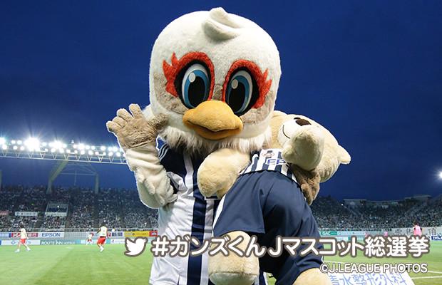 http://www.jleague.jp/img/mascot/2016/j2/matsumoto_lsize.jpg